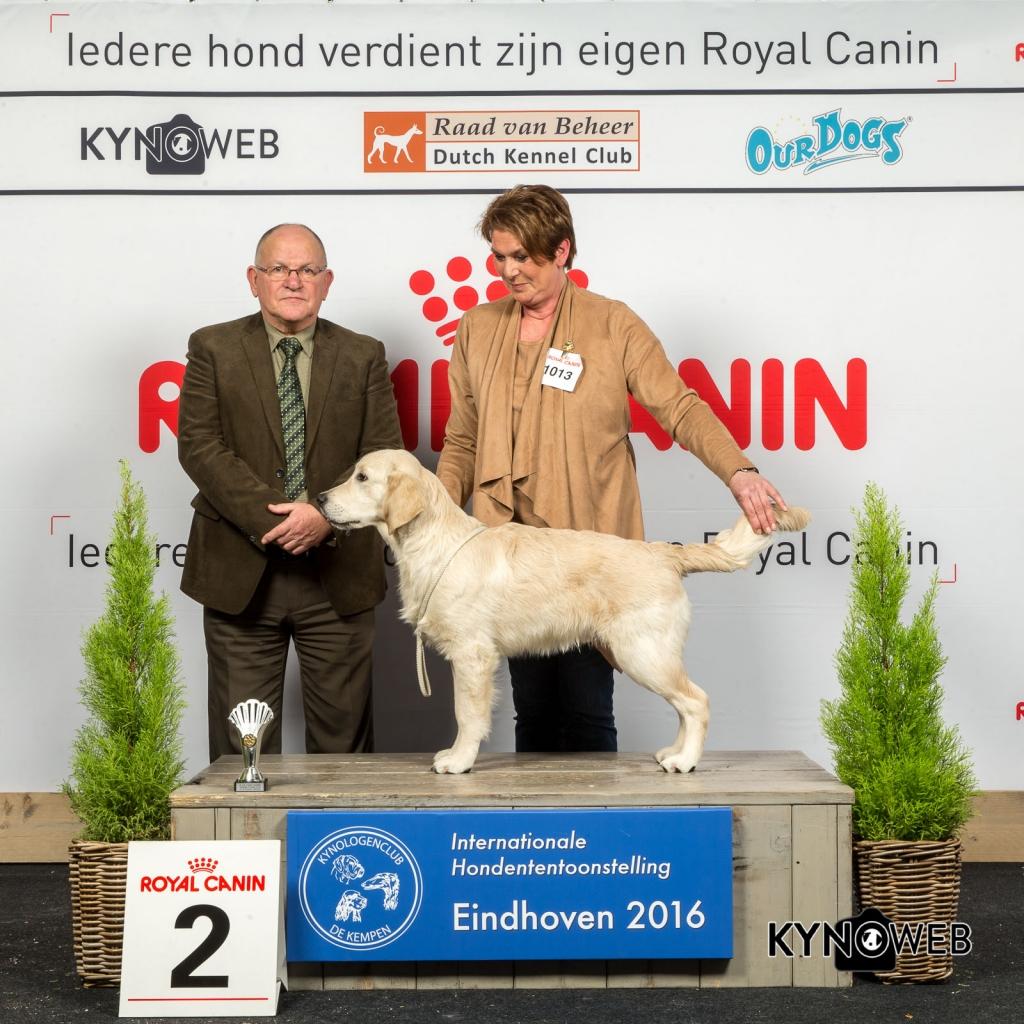 B_2_Zaterdag_Eindhoven_2016_Kynoweb- Ernst von Scheven_January 23, 2016_15_12_23