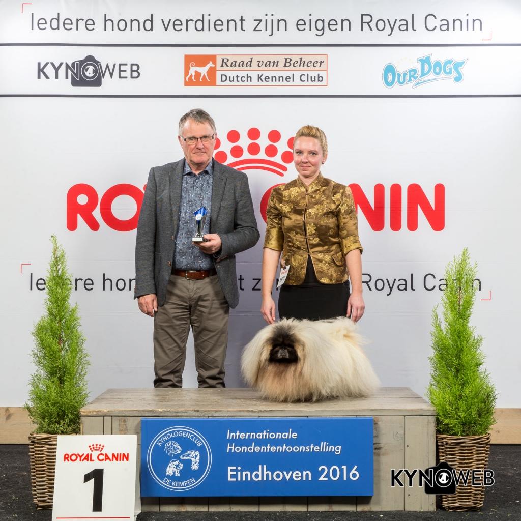 V_1_Zondag_Eindhoven_2016_Kynoweb- Ernst von Scheven_January 24, 2016_16_06_17