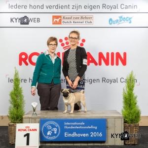 B_1_Zondag_Eindhoven_2016_Kynoweb- Ernst von Scheven_January 24, 2016_15_50_56