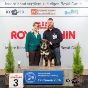 B_3_Zondag_Eindhoven_2016_Kynoweb- Ernst von Scheven_January 24, 2016_15_54_05