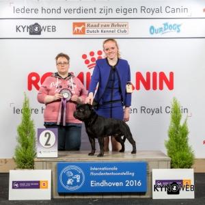 JH_2_Zaterdag_Eindhoven_2016_Kynoweb- Ernst von Scheven_January 23, 2016_15_02_20