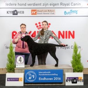 JH_4_Zaterdag_Eindhoven_2016_Kynoweb- Ernst von Scheven_January 23, 2016_15_06_00