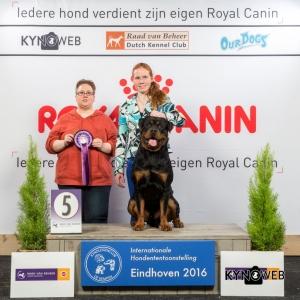JH_5_Zondag_Eindhoven_2016_Kynoweb- Ernst von Scheven_January 24, 2016_15_44_18