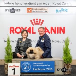 P_1_Zondag_Eindhoven_2016_Kynoweb- Ernst von Scheven_January 24, 2016_16_01_55