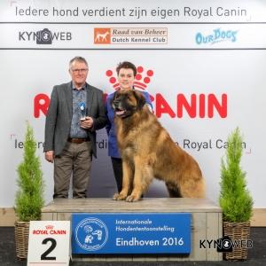 V_2_Zondag_Eindhoven_2016_Kynoweb- Ernst von Scheven_January 24, 2016_16_06_57