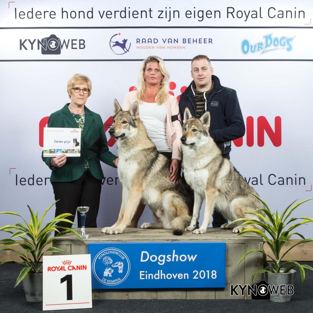 K_1_EINDHOVEN_2018_Kynoweb__20180202_15_54_51