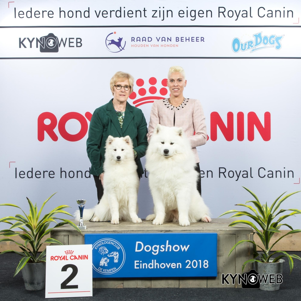 K_2_EINDHOVEN_2018_Kynoweb__20180202_15_55_44