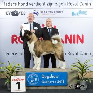 G_5_1_EINDHOVEN_2018_Kynoweb__20180202_16_07_06