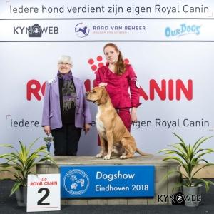 G_7_2_EINDHOVEN_2018_Kynoweb__20180202_16_25_55