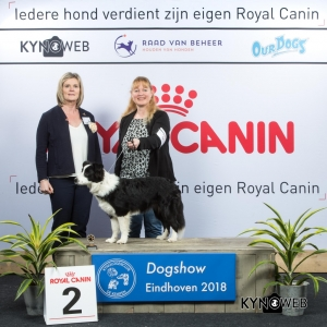 J_2_EINDHOVEN_2018_Kynoweb__20180202_15_37_03