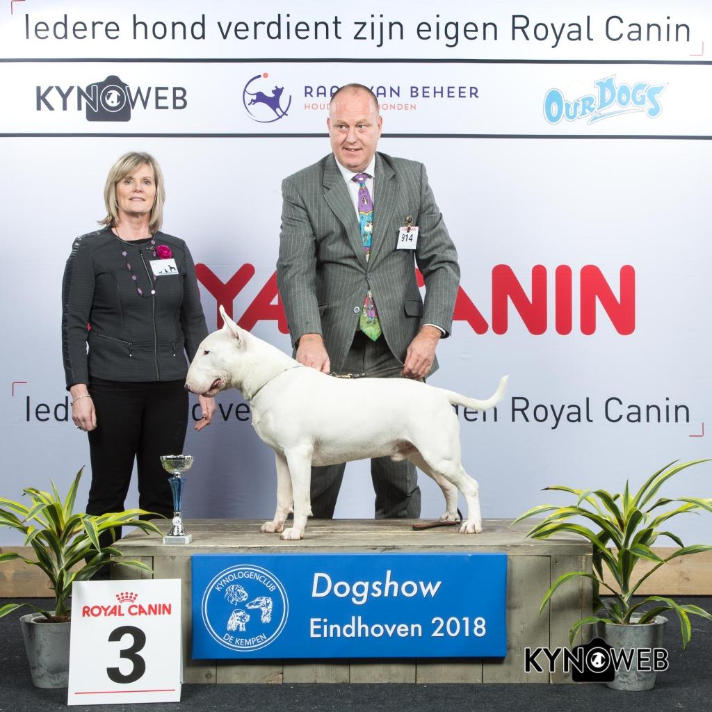 G_3_3_EINDHOVEN_2018_Kynoweb__20180203_16_09_23