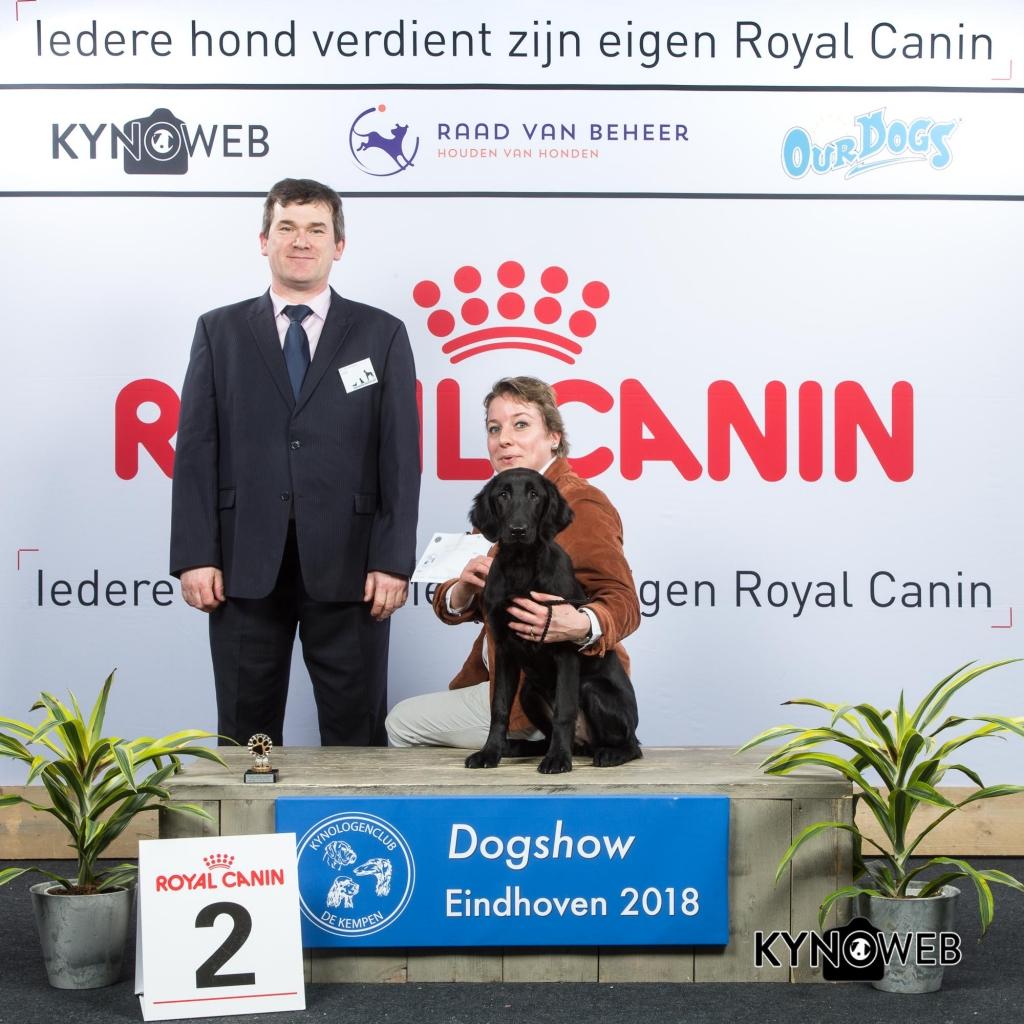 J_2_EINDHOVEN_2018_Kynoweb__20180203_15_34_13