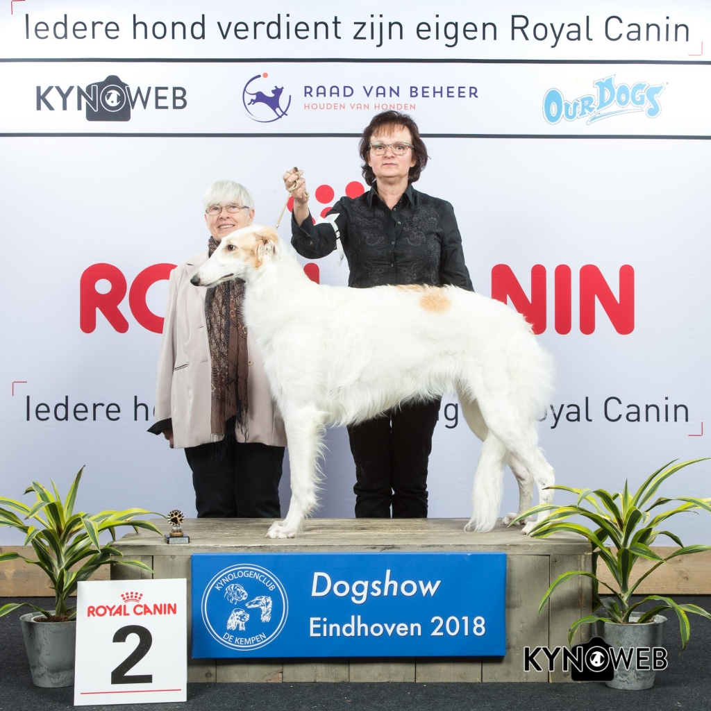P_2_EINDHOVEN_2018_Kynoweb__20180203_15_44_55