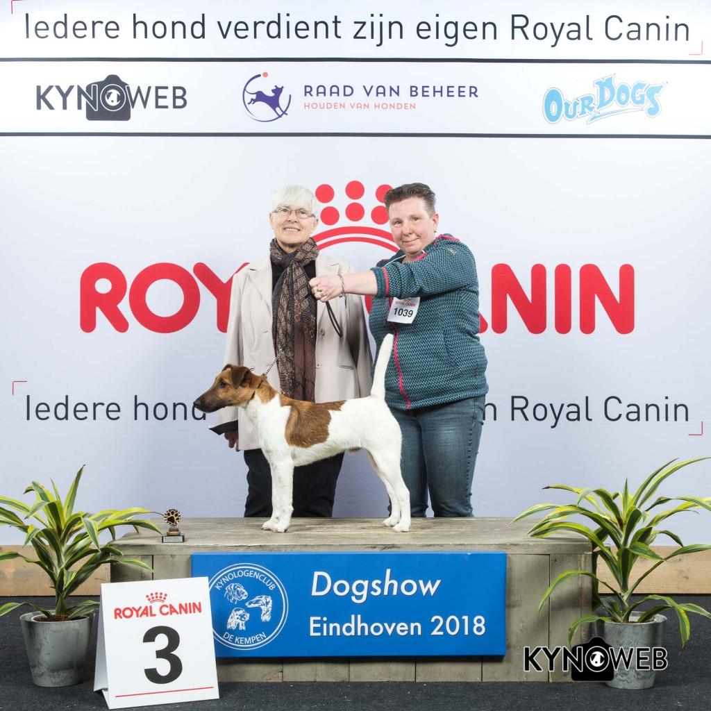 P_3_EINDHOVEN_2018_Kynoweb__20180203_15_45_52