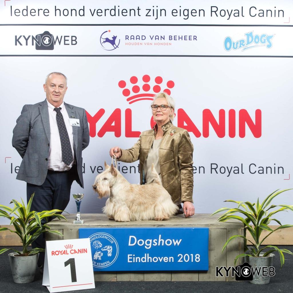 V_1_EINDHOVEN_2018_Kynoweb__20180203_15_48_32
