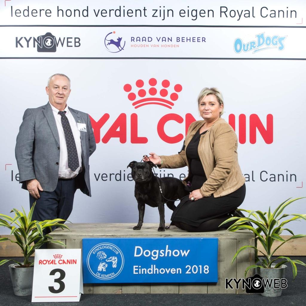 V_3_EINDHOVEN_2018_Kynoweb__20180203_15_50_36