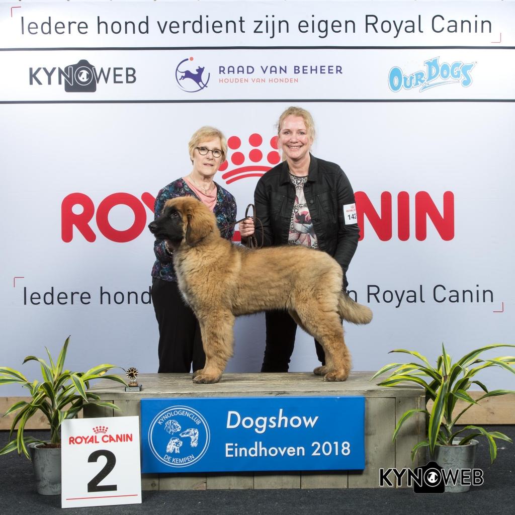 J_2_EINDHOVEN_2018_Kynoweb__20180204_15_53_31