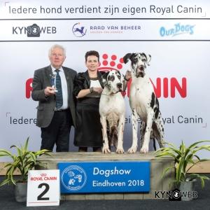 K_2_EINDHOVEN_2018_Kynoweb__20180204_16_17_29
