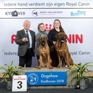 K_3_EINDHOVEN_2018_Kynoweb__20180204_16_20_40