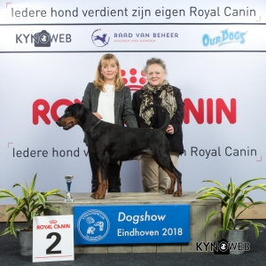 V_2_EINDHOVEN_2018_Kynoweb__20180204_16_10_23