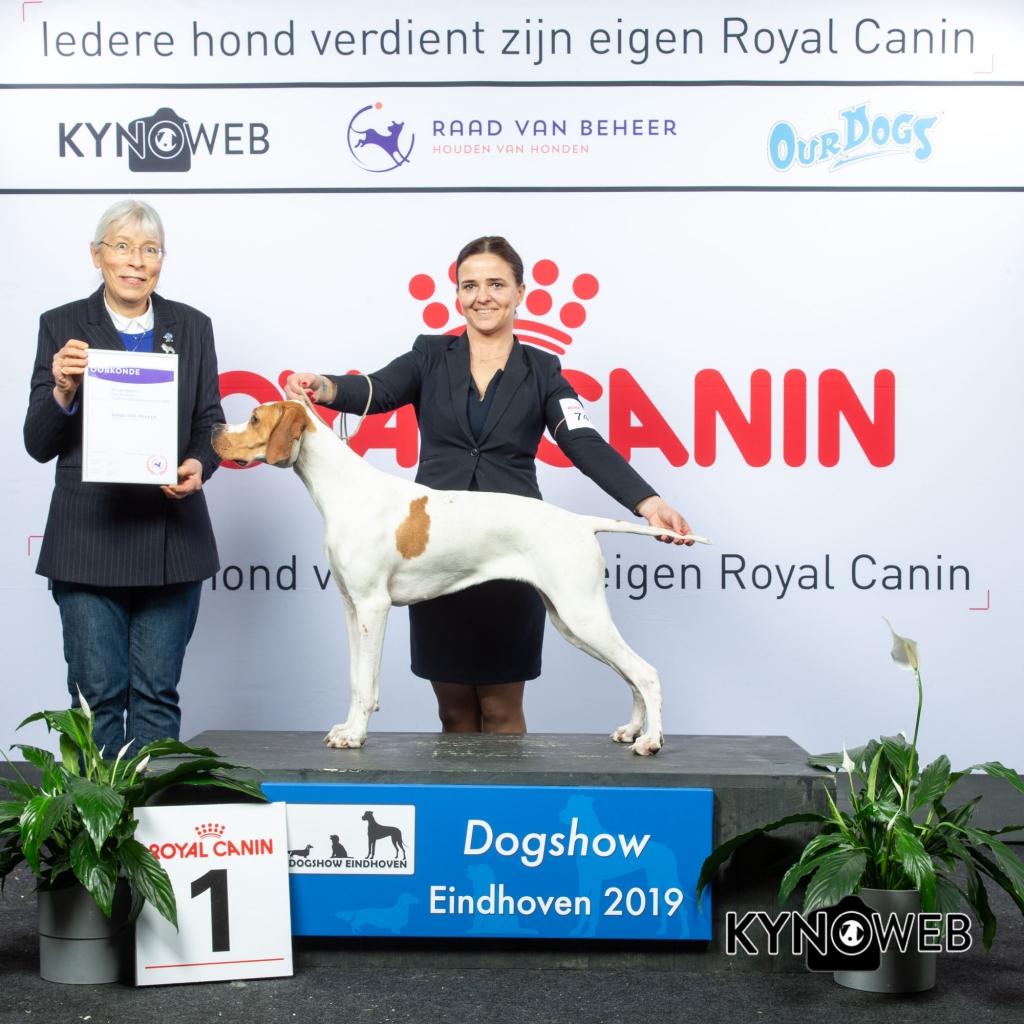 G_7_1_DOGSHOW_EINDHOVEN_2019_KYNOWEB_20190202_14_36_24_KY3_7201