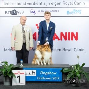 K_1_DOGSHOW_EINDHOVEN_2019_KYNOWEB_20190201_14_54_23_KY3_6725
