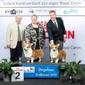 K_2_DOGSHOW_EINDHOVEN_2019_KYNOWEB_20190201_14_55_45_KY3_6726