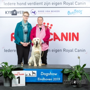 P_1_DOGSHOW_EINDHOVEN_2019_KYNOWEB_20190201_14_43_13_KY3_6708