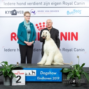P_2_DOGSHOW_EINDHOVEN_2019_KYNOWEB_20190201_14_45_52_KY3_6710