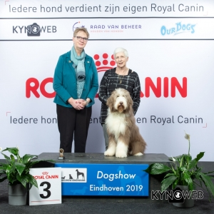 P_3_DOGSHOW_EINDHOVEN_2019_KYNOWEB_20190201_14_46_52_KY3_6713