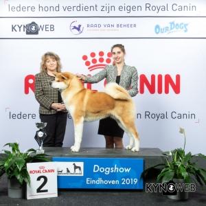 G_5_2_DOGSHOW_EINDHOVEN_2019_KYNOWEB_20190202_15_05_04_KY3_7227