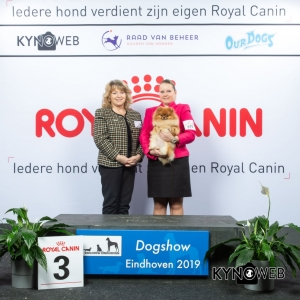 G_5_3_DOGSHOW_EINDHOVEN_2019_KYNOWEB_20190202_15_05_52_KY3_7228
