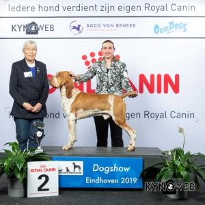 G_7_2_DOGSHOW_EINDHOVEN_2019_KYNOWEB_20190202_14_37_35_KY3_7202