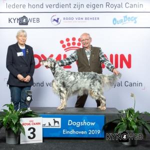 G_7_3_DOGSHOW_EINDHOVEN_2019_KYNOWEB_20190202_14_39_13_KY3_7207