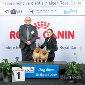 K_1_DOGSHOW_EINDHOVEN_2019_KYNOWEB_20190202_14_15_50_KY3_7181