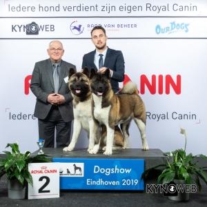 K_2_DOGSHOW_EINDHOVEN_2019_KYNOWEB_20190202_14_17_29_KY3_7183