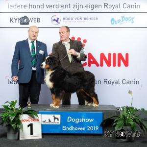 P_1_DOGSHOW_EINDHOVEN_2019_KYNOWEB_20190203_14_15_30_KY3_7710