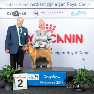 P_2_DOGSHOW_EINDHOVEN_2019_KYNOWEB_20190203_14_17_09_KY3_7712