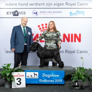 P_3_DOGSHOW_EINDHOVEN_2019_KYNOWEB_20190203_14_18_21_KY3_7713