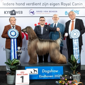 BIS_1_LR_DOGSHOW_EINDHOVEN_2020_KYNOWEB_KY3_2830_20200209_16_39_53