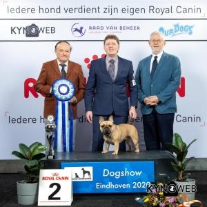 BIS_2_LR_DOGSHOW_EINDHOVEN_2020_KYNOWEB_KY3_2836-Edit_20200209_16_45_45