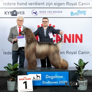 GROUP_10_1_LR_DOGSHOW_EINDHOVEN_2020_KYNOWEB_KY3_2183_20200208_16_06_06