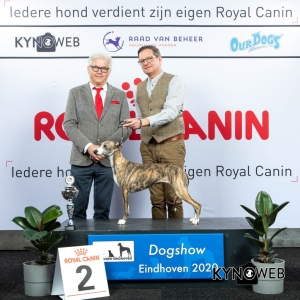 GROUP_10_2_LR_DOGSHOW_EINDHOVEN_2020_KYNOWEB_KY3_2185_20200208_16_07_12