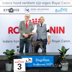 GROUP_10_3_LR_DOGSHOW_EINDHOVEN_2020_KYNOWEB_KY3_2189_20200208_16_08_16