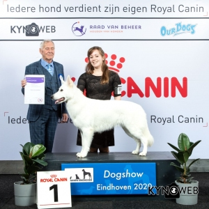 GROUP_1_1_LR_DOGSHOW_EINDHOVEN_2020_KYNOWEB_KY3_2239_20200208_17_02_32