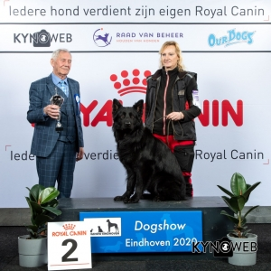 GROUP_1_2_LR_DOGSHOW_EINDHOVEN_2020_KYNOWEB_KY3_2241_20200208_17_04_14