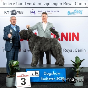 GROUP_1_3_LR_DOGSHOW_EINDHOVEN_2020_KYNOWEB_KY3_2246_20200208_17_06_50