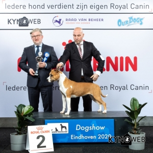 GROUP_3_2_LR_DOGSHOW_EINDHOVEN_2020_KYNOWEB_KY3_2223_20200208_16_48_34