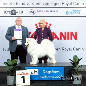 GROUP_5_1_LR_DOGSHOW_EINDHOVEN_2020_KYNOWEB_KY3_2213_20200208_16_37_07