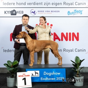 GROUP_6_1_LR_DOGSHOW_EINDHOVEN_2020_KYNOWEB_KY3_2208_20200208_16_27_39